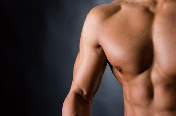 鍛え上げられた筋肉